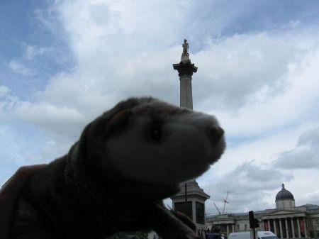 Wiesel am Trafalgar Square in London