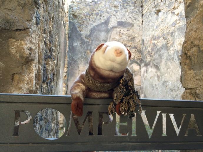 Auferstanden aus Ruinen: Das Wiesel in Pompeji. Es freut sich. Hier ist zwar alles kapuut, aber niemand gibt ihm die Schuld dafür.