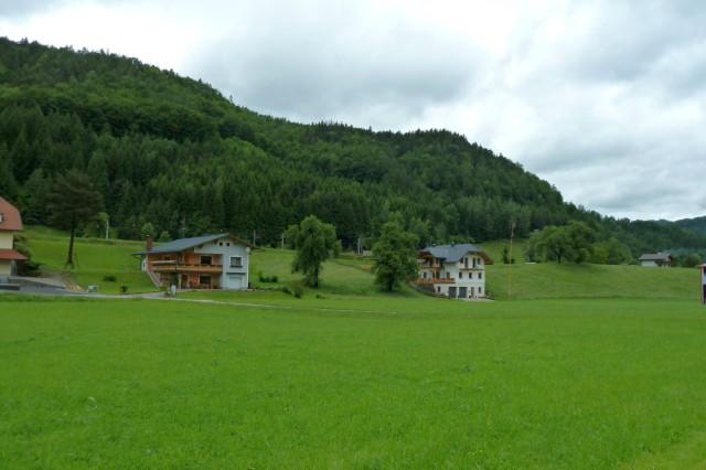 Schön grün in Klaus.