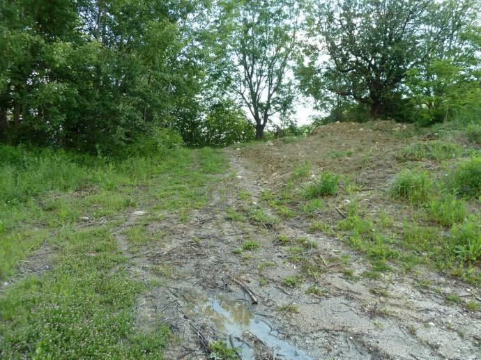 So sahen die weniger steinigen Teile des Wegs aus.