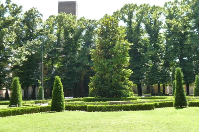 10 Meter hoher Rhododendron im zentralen Innenhof den Palazzo.