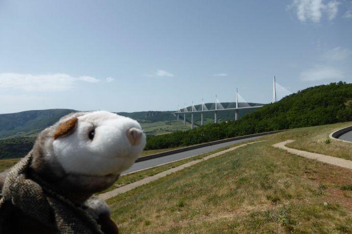 Die schönste Autobahnbrücke Europas, davor das schönste Wiesel der Welt.
