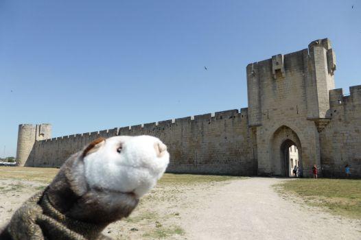 Stadtmauer von Aigues-Mortes.