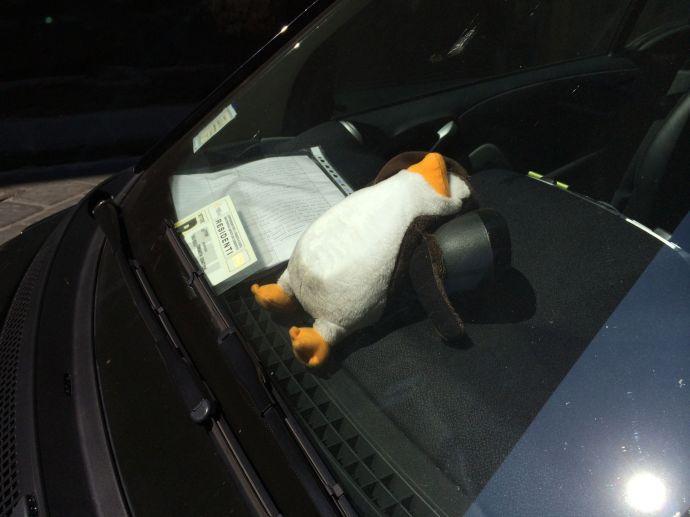 Würde ich Huhu nie antun: Bei diesem Wetter lässt man keine Pinguine im Auto, die schmelzen doch!