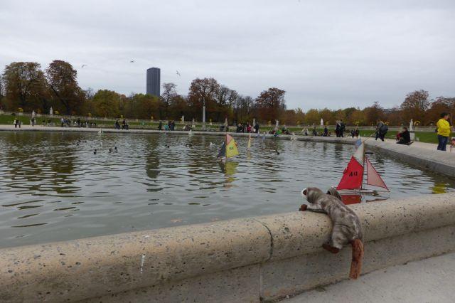 Das Wiesel versucht vergeblich auf einem Boot anzuheuern.