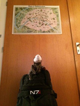 Schwerstes Stück im Gepäck: Das Wiesel freut sich, dass es wieder losgeht. Im Hintergrund ein historischer Stadtplan von Paris, den ich in den letzten Wochen auswendig gelernt habe.