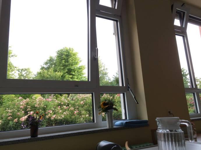 (Keller-) Zimmer mit Aussicht.