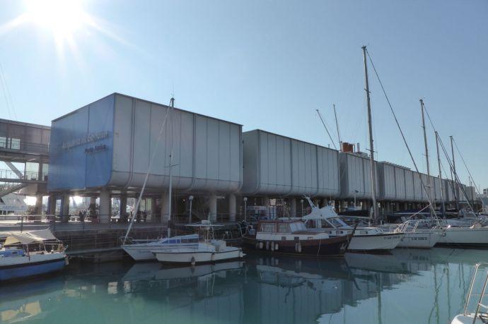 Das größte Aquarium Europas.