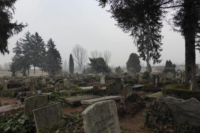 Lediglich der jüdische Teil des Friedhofs hat ein wenig Charme und Charakter, weil er ein wenig verwildert ist.