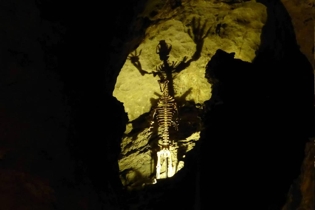 Skelett eines Höhlenbären + dramatische Beleuchtung = Fluchtreflex bei Menschen.