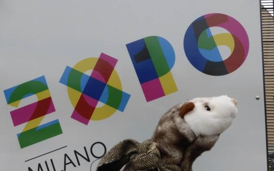 Das Wiesel freut sich auf die Expo.