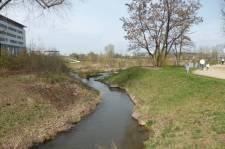Wasserpark: Das ehemalige Gelände der Bundesgartenschau.