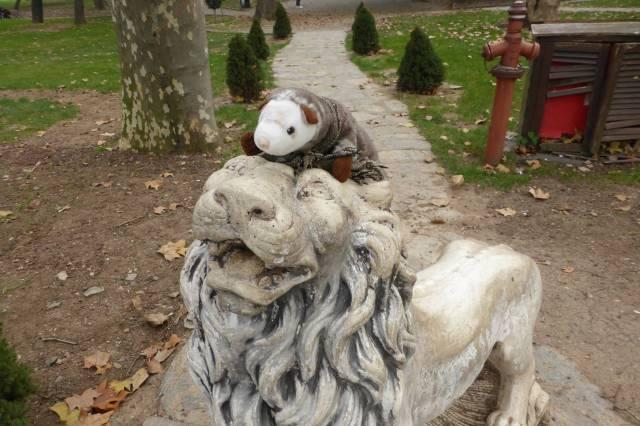 Löwen ärgern ist ein Hobby des Wiesels. Hat es auch in Genua schon gemacht. Und in Athen. Und in Paris.