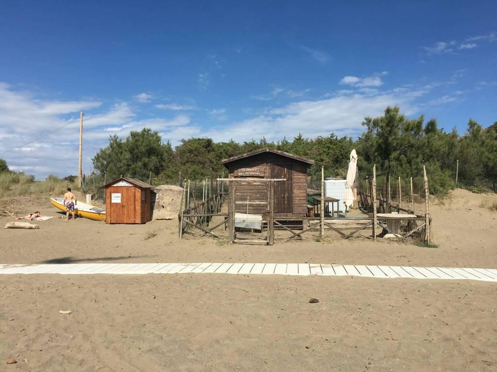 Fischerhütte am Strand.